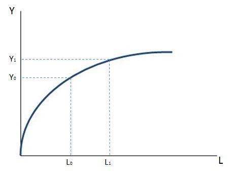 Función de producción - curva de trabajo