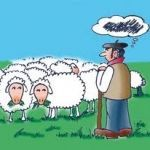 Pastor y ovejas