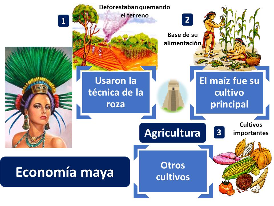Agricultura Economía Maya