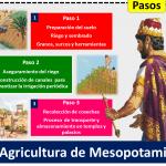 Agricultura De Mesopotamia 1