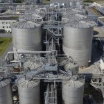 Biotecnología Industrial