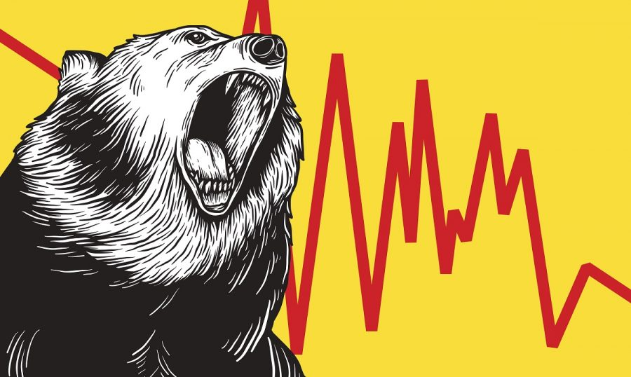 Bear Market Icon Symbol Vector Concept