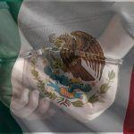 Delincuencia En México Economía
