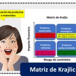 Matriz De Krajlic 1
