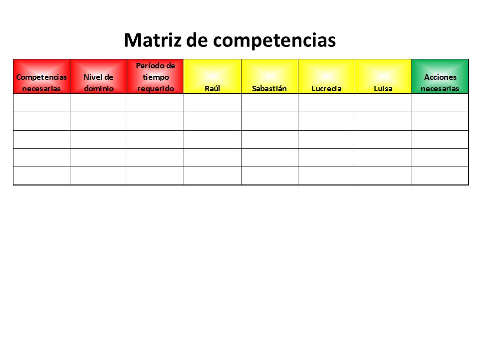 Matriz De Competencias 2