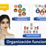 Organizacion Funcional 1