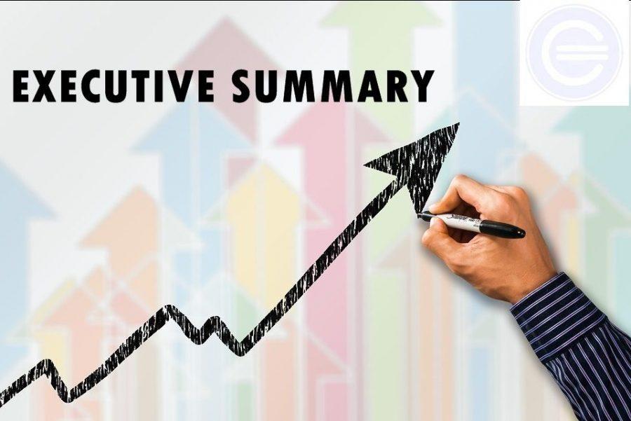 Plan Executive Summary