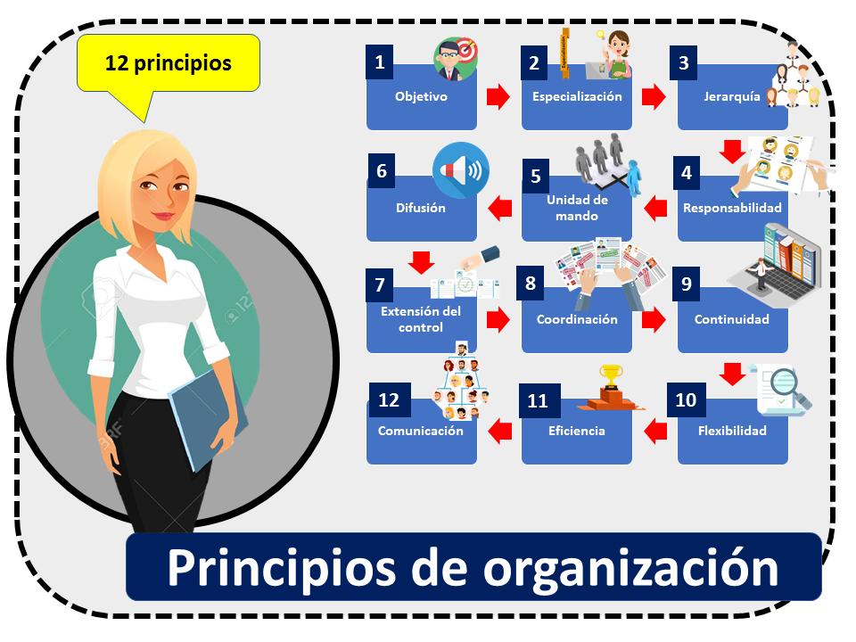 Principios De Organizacion 12 Principios