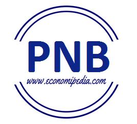 Producto Nacional Bruto Pnb