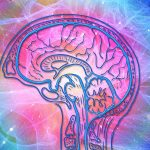 Revolución Cognitiva