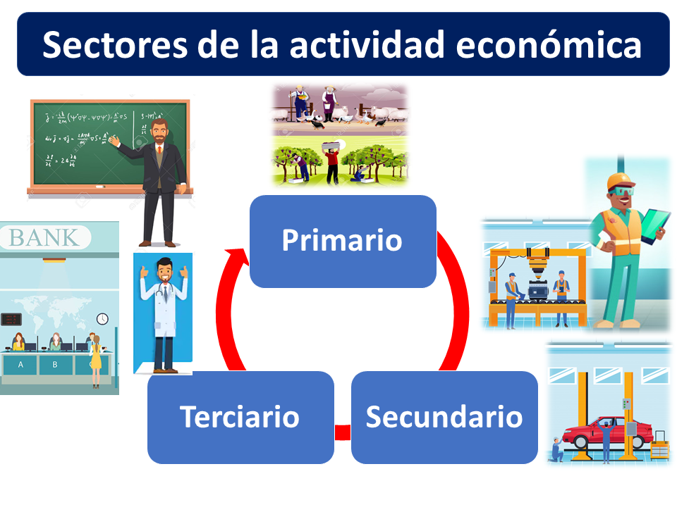 Sector Primario Secundario Y Terciario Qué Es Definición Y Concepto 2021 Economipedia