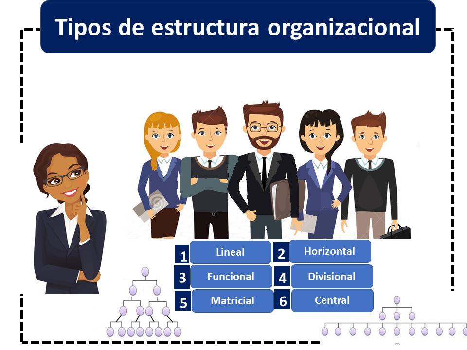 Tipos De Estructura Organizacional 2